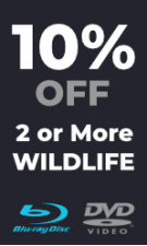 Wildlife - Extra 10% Off 2 or More