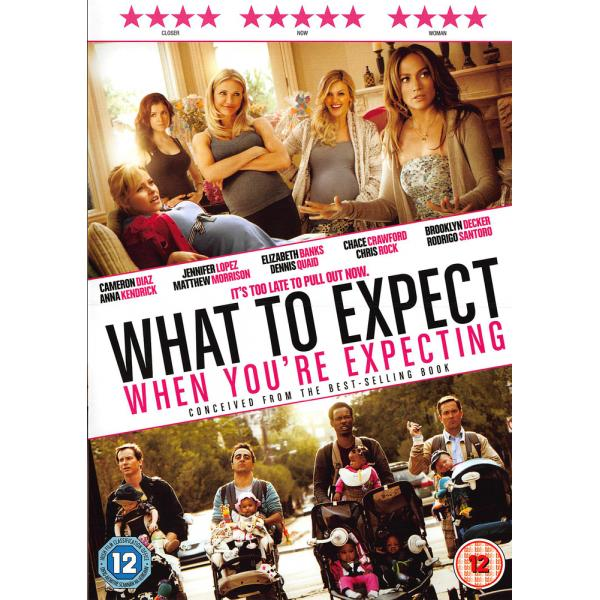 What To Expect When You're Expecting DVD